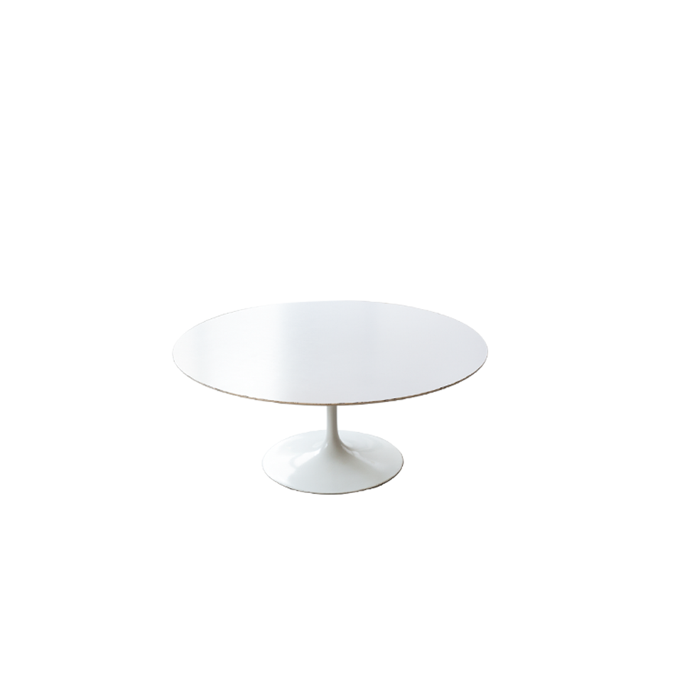 Eero Saarinen Outdoor Dining Table